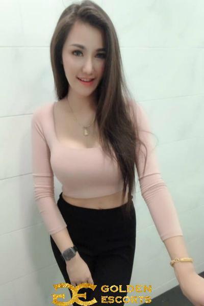 Model YY